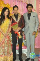Bharath-Jeshly marriage reception photos (19)