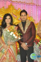 Bharath actor marriage reception (4)