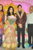 Bharath actor marriage reception (7)