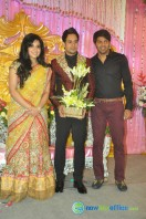 Bharath actor marriage reception (8)