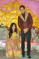 Bharath wedding reception photos (2)