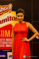 Celebs at SIIMA 2013 (12)