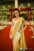 Celebs at SIIMA 2013 (2)