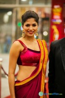 Celebs at SIIMA 2013 (33)