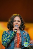 Celebs at SIIMA 2013 (82)