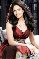 Komal Sharma New Photo Shoot Stills