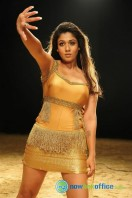 Nayanthara New Hot Photos (11)
