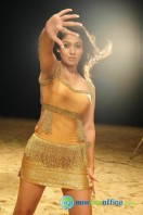 Nayanthara New Hot Photos (13)