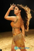 Nayanthara New Hot Photos (14)