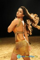 Nayanthara New Hot Photos (15)