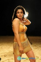 Nayanthara New Hot Photos (16)