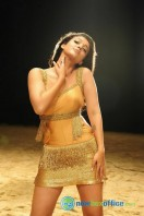 Nayanthara New Hot Photos (18)