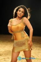 Nayanthara New Hot Photos (23)