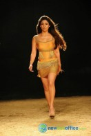 Nayanthara New Hot Photos (31)