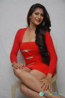 Neha Saxena Photos at Dandu Pressmeet (12)