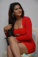 Neha Saxena Photos at Dandu Pressmeet (13)