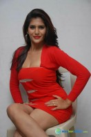 Neha Saxena Photos at Dandu Pressmeet (14)