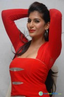Neha Saxena Photos at Dandu Pressmeet (15)