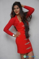 Neha Saxena Photos at Dandu Pressmeet (6)