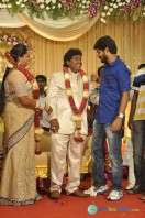Black Pandi Wedding Reception Photos (5)