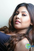 Komal Jha New Photoshoot (32)
