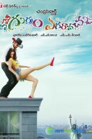 Emo Gurram Egaravachu Movie Posters (11)