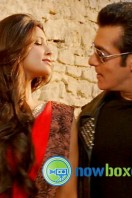 Jai Ho Movie Photos (3)