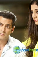 Jai Ho Movie Photos (6)