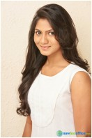 Shruthi Reddy actress photos (17)