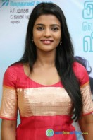 Iyshwarya Rajesh at Alaiye Alaiye Audio Launch (6)