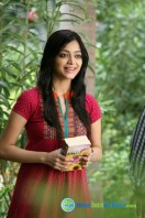 Bhadram New Photos (8)