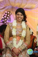 Ajay Ratnam Son Marriage Reception Photos