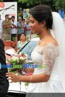 Amala paul enagagment images (13)