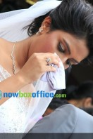 Amala paul enagagment images (38)