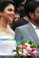 Amala paul enagagment images (59)