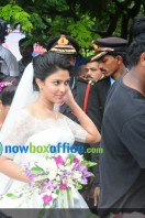 Amala paul enagagment images (7)