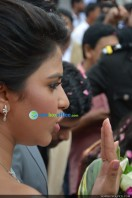 Amala paul enagagment images (82)