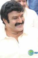 Balakrishna New Movie Launch (13)