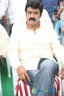 Balakrishna New Movie Launch (14)