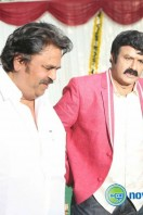 Balakrishna New Movie Launch (26)