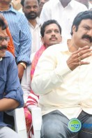 Balakrishna New Movie Launch (35)