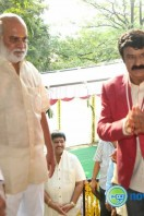Balakrishna New Movie Launch (4)