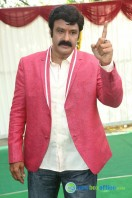 Balakrishna New Movie Launch (48)