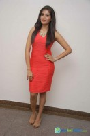 Meghana Raj at Bahuparak Audio Launch (1)