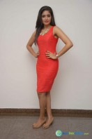 Meghana Raj at Bahuparak Audio Launch (3)