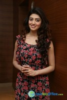 Pranitha Subash at Hyderabad Blues Restaurant Launch (10)