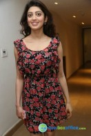 Pranitha Subash at Hyderabad Blues Restaurant Launch (5)