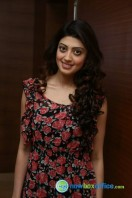Pranitha Subash at Hyderabad Blues Restaurant Launch (9)