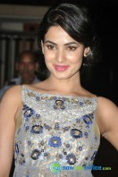 Sonal Chauhan New Photos