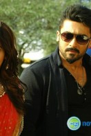 Anjaan New Gallery (9)